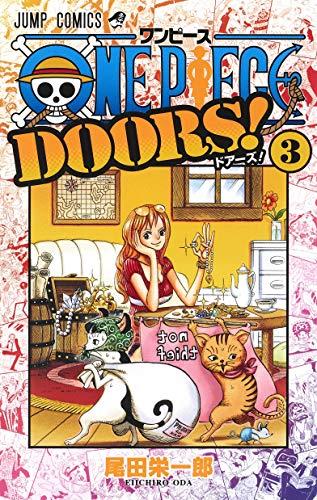 ONE PIECE DOORS! (3)