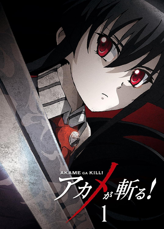 爽快! 女剣士が登場するアニメ。