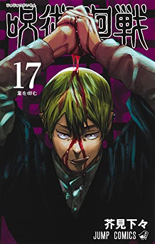 呪術廻戦 (17)